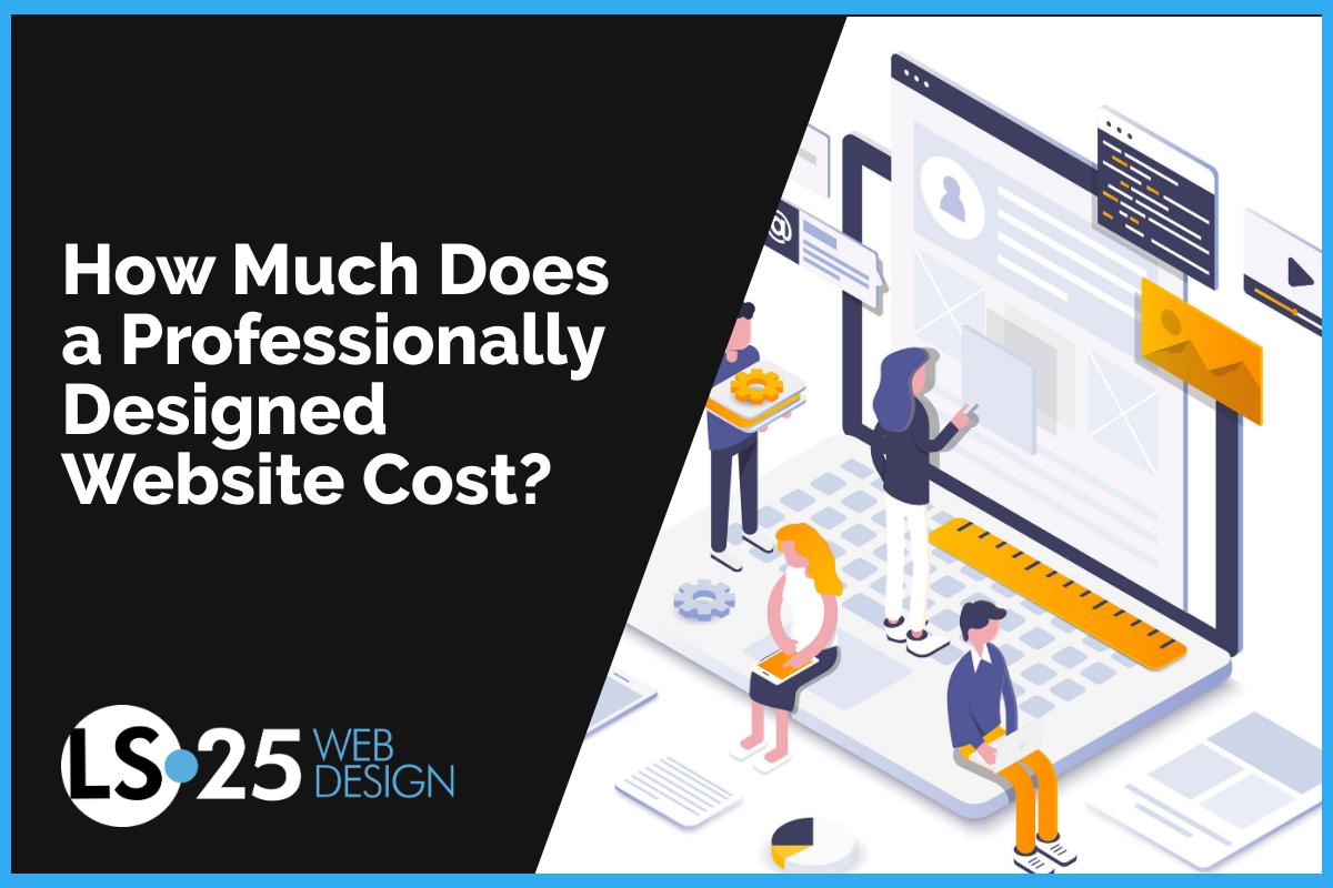 professional web design pricing